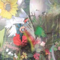 Flowers_LP_Jacket_web
