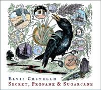 secretprofanesugarcancover